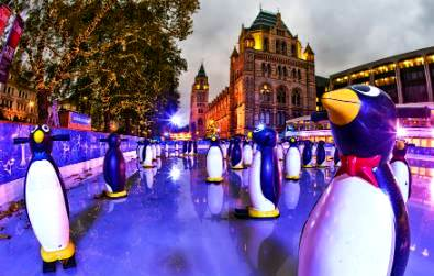 penguins-ice-rink-2010