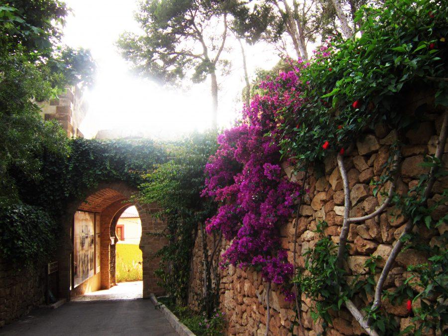 Denia Castle
